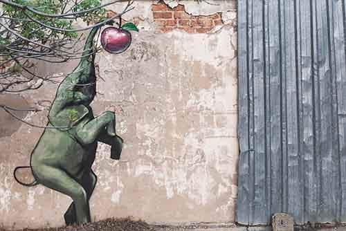 interactive-elephant-street-art-falco-one-south-africa-8