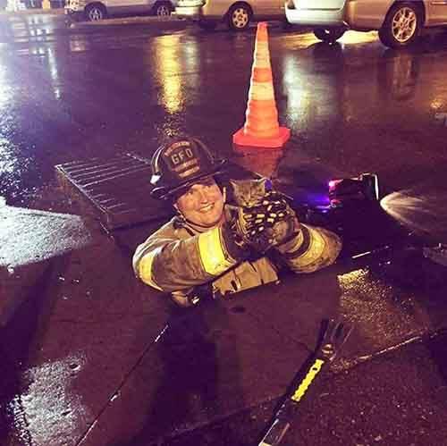 firefighters-rescuing-animals-saving-pets-40-5729ec25a0a8e__605